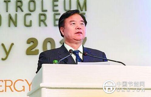 王宜林:致力一带一路互联互通构筑全球能源美好未来