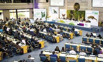 全球污染形势严峻 联合国环境大会发出环保倡议
