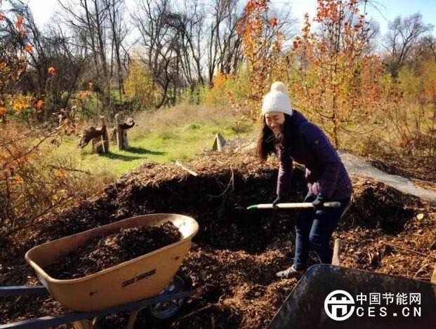 """她用5年将荒废的土地打造成""""森林生态农场"""""""
