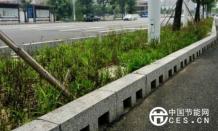 """会""""喝水""""的道路有效缓解三亚城市内涝吗?"""