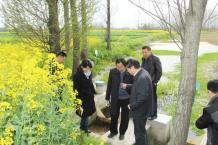 扬州高邮:中国工程院院士王超考察高邮灌区生态节水工作