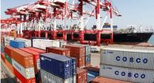 青岛港工人群体先进事迹纪实:以个人梦托起港口梦、中国梦