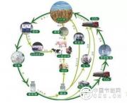 """国家能源局:""""十三五""""生物质能产业新增投资约1960亿元"""