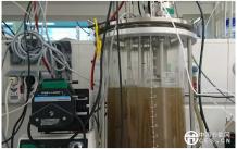 中国荷兰德国科学家最新发现或将颠覆污水处理传统